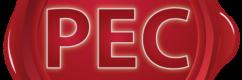 processo-telematico-pec