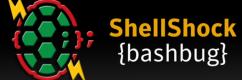 shellshock-bug-100457107-large