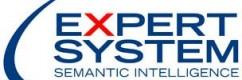 ExpertSystem2013-304x200