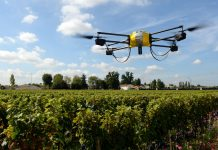 Smart Agriculture: nasce Agritech Innovation Hub