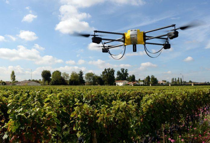 Smart Agriculture: entro il 2022 valore di mercato raddoppia
