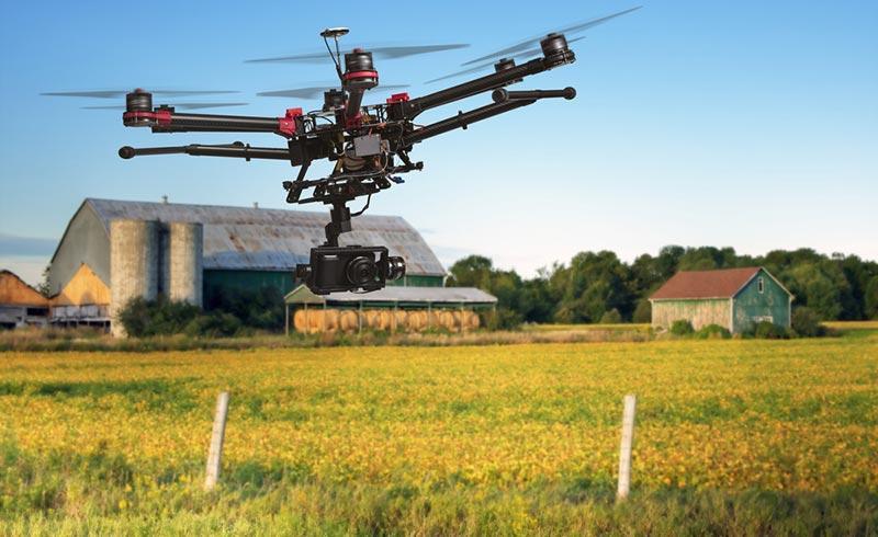 Agricoltura di precisone grazie ai modelli predittivi basati sui Big Data