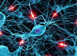 Piattaforme FinTech: dalle reti neurali alla blockchain