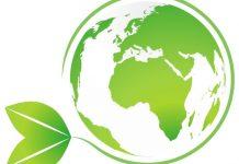 Settore IT: necessario intervento per ridurre l'impronta energetica
