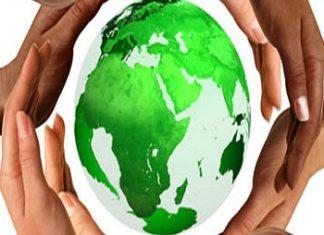 Sostenibilità, gli investimenti non riescono a decollare