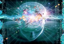 intelligence emotiva