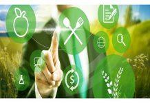 Settore food: nell'era Neandertal della comunicazione digitale