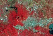 Earth Observation for Sustainable Development