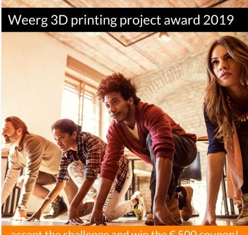 Weerg 3d Printing Project Award