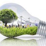 L'impegno di Google per la sostenibilità ambientale