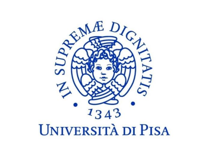 Software Heritage: l'Università di Pisa aderisce al programma