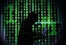 Zebrocity: scoperti nuovi componenti della famiglia di malware