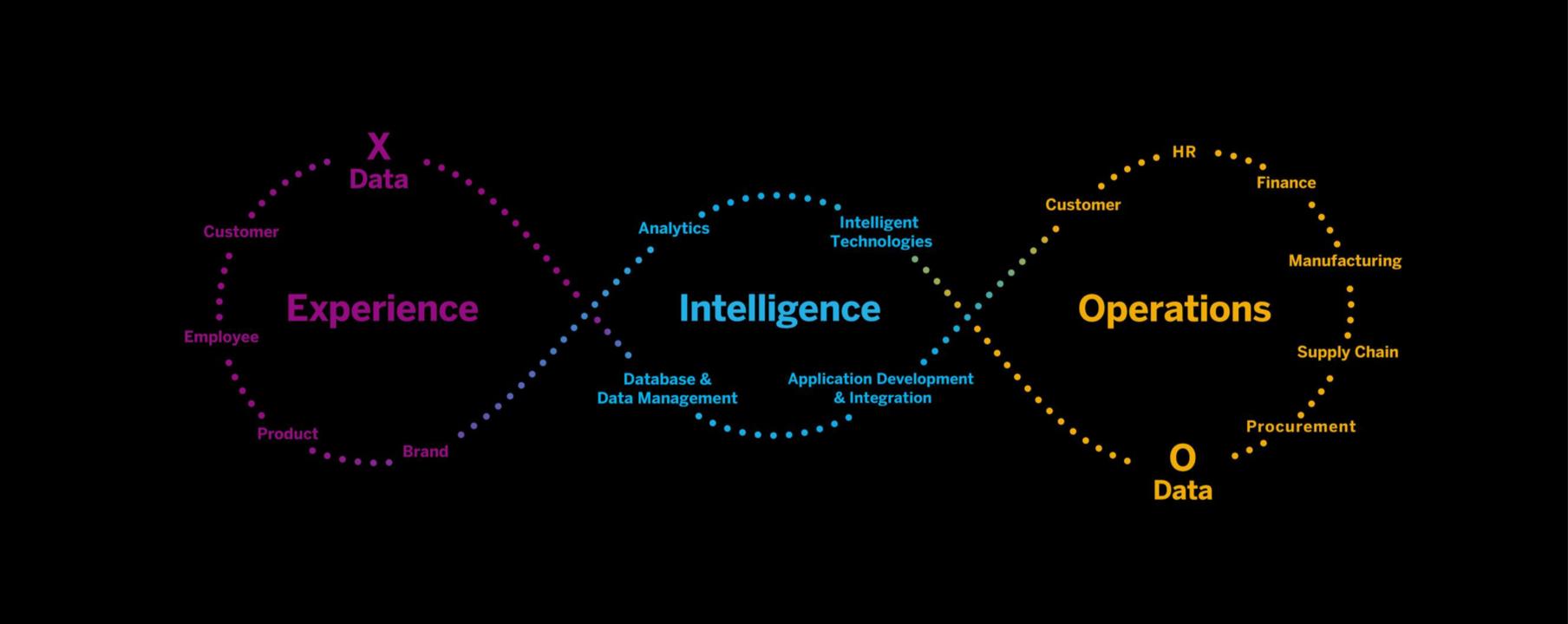 economia dell'esperienza SAP