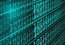 Chi si occupa della supervisione dei dati?