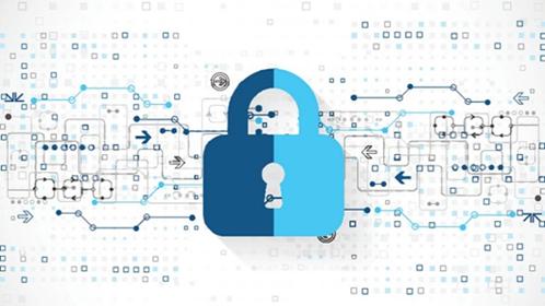 Data Privacy Benchmark e vantaggi economici