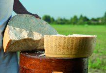 Parmigiano Reggiano: il simbolo del Made in Italy sceglie il marketing omnichannel di Selligent Marketing Cloud e la digital agency bolognese Spotview