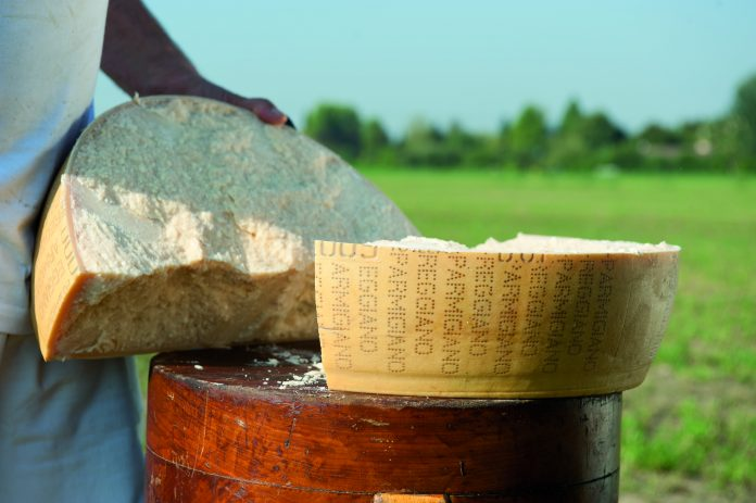 Parmigiano Reggiano: il simbolo del Made in Italy sceglie il marketing omnichannel di Selligent Marketing Cloud e la digital agency bolognese Spotview