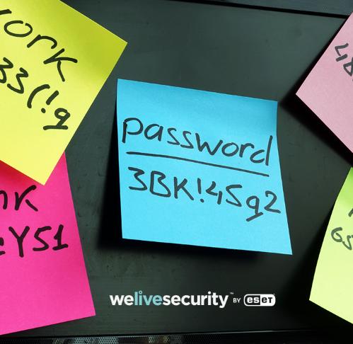 Gestori di password: cosa sono e perché sono utili?