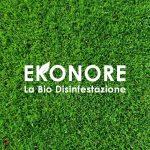 Ekonore ha scelto la soluzione CRM Oracle CX Cloud