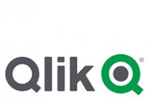 Data Literacy 2.0: leggere, lavorare e comunicare con i dati qlik