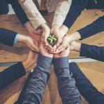 Greenpeace Italia presenta la nuova piattaforma digitale