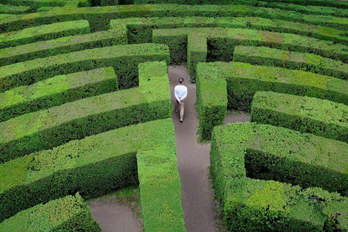 Semplificazione amministrativa e performance: 5 elementi chiave