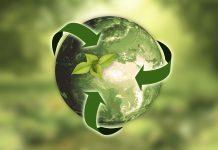 Transizione ecologica: il cambiamento inizia in azienda