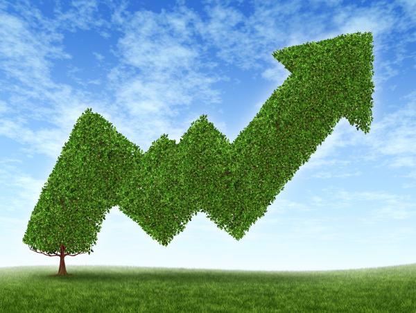 sostenibilità dei brand