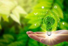 incidenza della sostenibilità